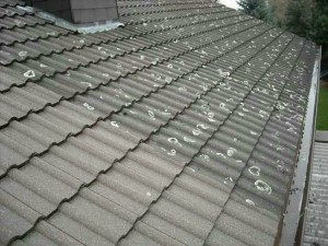 Dachsanierung